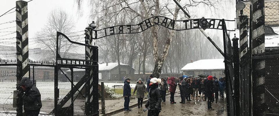 Auschwitz entrada
